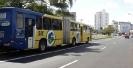 ônibus articulado em faixa exclusiva